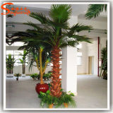 Decoración interior de fibra de vidrio artificial Palmera