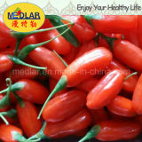 Colore rosso Gojiberry dell'alimento biologico dell'ETB della nespola