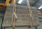 Marbre en bois gris neuf des graines de bonne qualité
