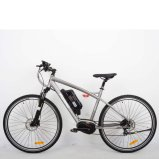 "28 "" 250W Mountain Electric Bike (TDB06Z)"