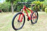 Il nuovo adulto di modo di Dbx sgomina la bici della lega di alluminio