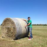 Rede da bala da agricultura