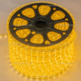 Striscia flessibile 30LEDs/m decorativa esterna dell'indicatore luminoso 220V SMD 5050 LED