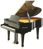키보드 그랜드 피아노 Gp 152 디지털 Pianodisc 침묵하는 시스템 Schumann