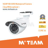 Bestes FCC IR-Nachtsicht 1080P Full HD 2 Megapixel P2p IPcctv-Camera Poe, CER, RoHS Certification
