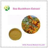 Extracto natural del espino cerval de mar de la alta calidad el 100%