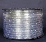Indicatore luminoso di striscia impermeabile chiaro della corda LED di futuro 3W/M SMD 5050
