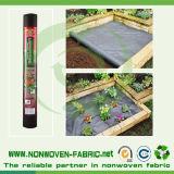 Tessuto non tessuto Anti-UV favorevole per le piante da copertura