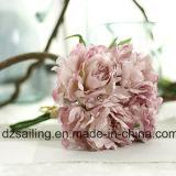 5 flores sin tallo dulce Peony Bouquet para la decoración (SF13823 / 5)