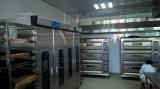 De Oven van het Brood van de Oven van het Gas van het Dek van de Bakkerij van het roestvrij staal in de Apparatuur van de Bakkerij