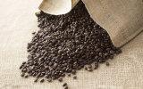 Hohe leistungsfähige Kaffee-Körnchen-Verpackungsmaschine (XY-80BK)
