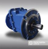 Réducteurs hélicoïdaux intégrés de vitesse de série de la bonne qualité RC01-04