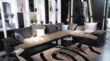 O sofá elevado da classe ajustou-se para a entrada da sala de visitas ou do hotel
