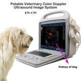Cor veterinária Doppler Ew-C5V do sistema diagnóstico do ultra-som com ponta de prova convexa C3r60 e o transdutor Rectal LV7.5 para o diagnóstico de Pregency