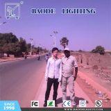 Luz de calle de la energía solar LED del viento (BDTYN6-8)