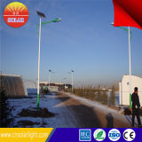 Projeto econômico completamente + meia potência 12 do poder solar do diodo emissor de luz horas de luz de rua