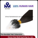 Human Hair를 가진 마이크로 Loop Human Hair Extension