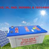 12 Volt-Batterie-trockene Zellen-Nasszelle-Batterie 12 Volt-trockene Batterien
