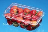 Vácuo plástico de alta velocidade automático da bandeja da fruta que dá forma à máquina