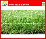 Populair Groen Gras (N4SA1830B)