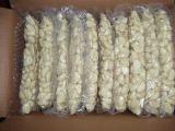 도매 유기 거피된 마늘