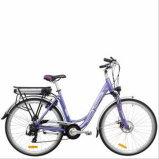 """28 """"、250-500W都市E-Bike (TDB01Z)"""