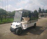 Carrello elettrico del carico di 2 Seaters (LT-A2. H8)