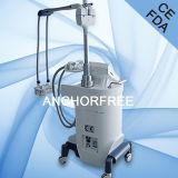 Équipement de salon de beauté de Cryolipolysis/gros équipement de salon de beauté/ce de congélation de Lipo Cryo (V12)
