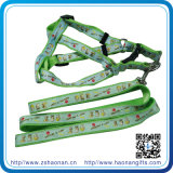 새로운 Arrivel Custom Retractable Colorful Nylon Dog Collar 및 Leash