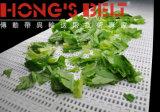 Plastic modular Conveyor Belt para Food com FDA Certificate