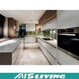 Het naar maat gemaakte Meubilair Van uitstekende kwaliteit van de Keukenkast (ais-K203)