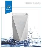 Раковина мытья тазика постамента мытья Weidansi керамическая (WDS-P7101)