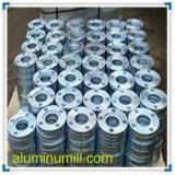 Glissade de l'aluminium B247 1060 sur la bride
