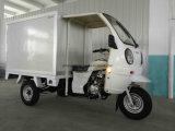 新しい保つべきクローズボックスの三輪車(TR-22)
