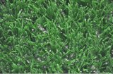 Filato della curva durevole più popolare 2016 che modific il terrenoare erba artificiale