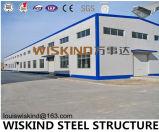 Gruppo di lavoro d'acciaio del magazzino dell'edilizia della struttura dell'H-Acciaio