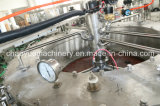 Máquina de rellenar de la cerveza de la botella de cristal (series de BGF)