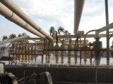 Gruppo dell'idrociclone dell'unità di elaborazione per la separazione dell'oro