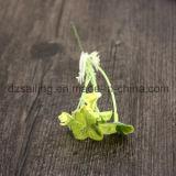 Дешевые искусственние цветки клевера для украшения дома венчания (FF-2699)