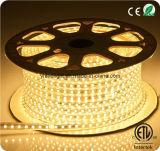 5050 warmes Onlineeinzelhandelsgeschäft des Weiß-7mm LED des Streifen-ETL