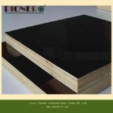 la película negra de Brown/de la base del álamo del pegamento de la melamina de 1220X2440 WBP hizo frente a la madera contrachapada