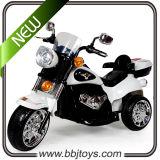 Motocyclette à piles de chevreaux - Bjc119