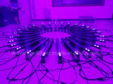 Staaf van de openlucht14PC 15W 6 in-1 LEIDENE van het Pixel Wasmachine van de Muur