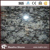 Brames blanches de jet Polished blanches/d'onde granit/tuile