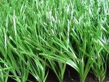 Monofilament het Kunstmatige Gras van uitstekende kwaliteit van de Tuin voor het Gebied van het Voetbal