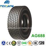 Zuverlässiges All Steel Radial Tralier Tire (12R22.5)