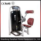 Machine commerciale arrière de gymnastique de bâtiment de corps de la prolongation (TZ-6006)