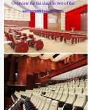 Cadeiras simples novas do auditório do plutônio da classe superior especial do assento Hj9918 de Hongji