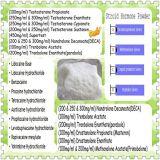 Polvere steroide 6-Bromoandrostenedione CAS di elevata purezza: 38632-00-7 steroide dell'androgeno