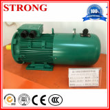 Hebemaschine Motor von Construction Hoist Spare Parts